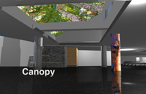 Canopy PerspectivePITN