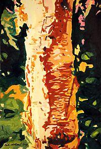 Deep Forest Birch PITN