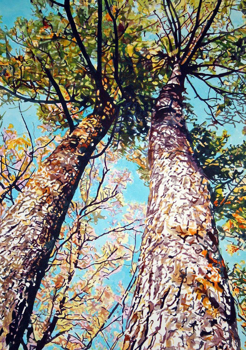 Longleaf Canopy