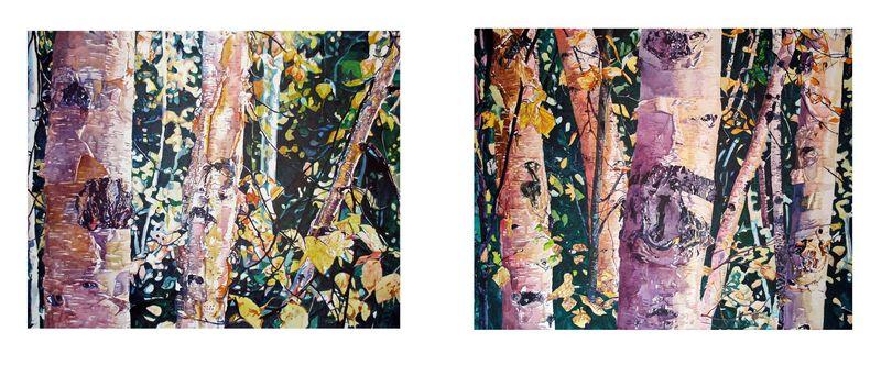 Birch Woods for Denali3P