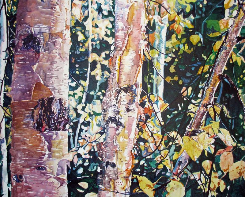 Birches for Denali1PITN