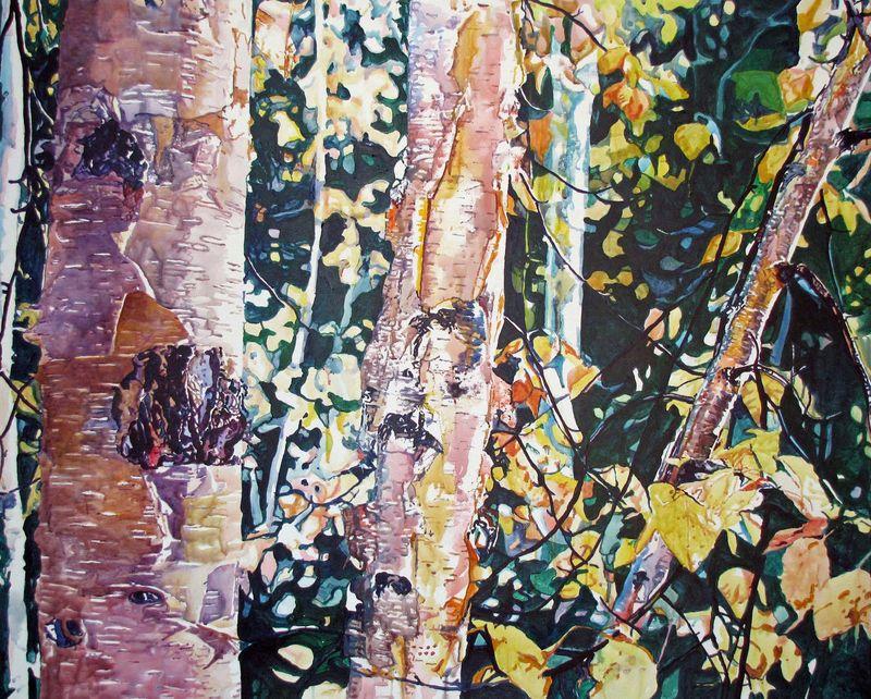 Birches for Denali1PITN