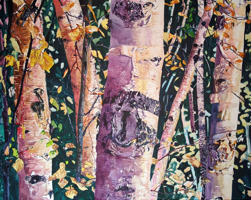 Birches for Denali PITNB