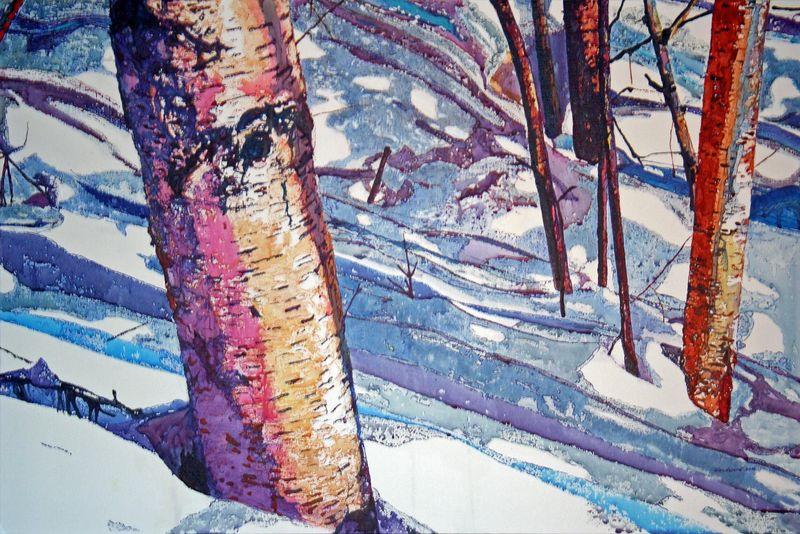 Colors of WinterPITN