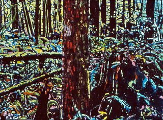 Old Growth Forest PITN