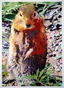 Ground_squirrel_pitn_2