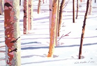 February_light_and_shadows_pitn_2