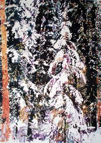 Snow_at_christmas_pitn_1